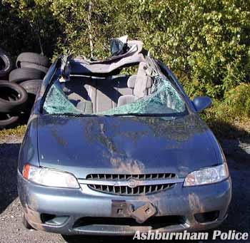 dfw_moose_car_accident.jpg