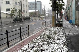 大正区の雪化粧2