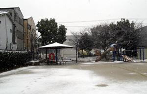 大正区の雪化粧3