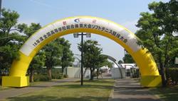 全国高等学校総合体育大会
